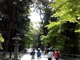 060429-shimogamo-06.jpg