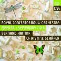 CD-Mahler-Haitink-02.jpg